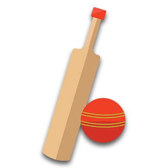 Game of cricket essay